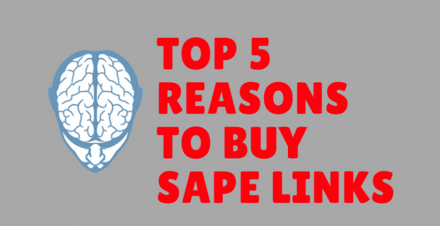 Top 5 Reasons to Buy SAPE Links